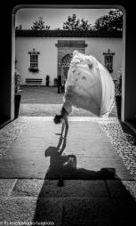 fotografo-matrimonio-varese-tenuta-la-passera-fotorotastudio (44)