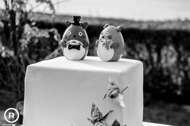 bestweddingphotographers-italy-lake-fotorota (51)