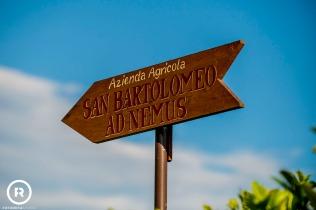 matrimonio-azienda-agricola-sanbartolomeo-adnemus-appiano-gentile-ricevimento-wedding-fotografie (35)