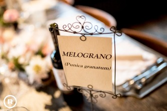 campdicent-pertigh-caratebrianza-matrimonio-foto-reportage-55